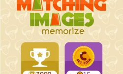 Uji Kecerdasan Anda dengan Game Lokal Matching Images